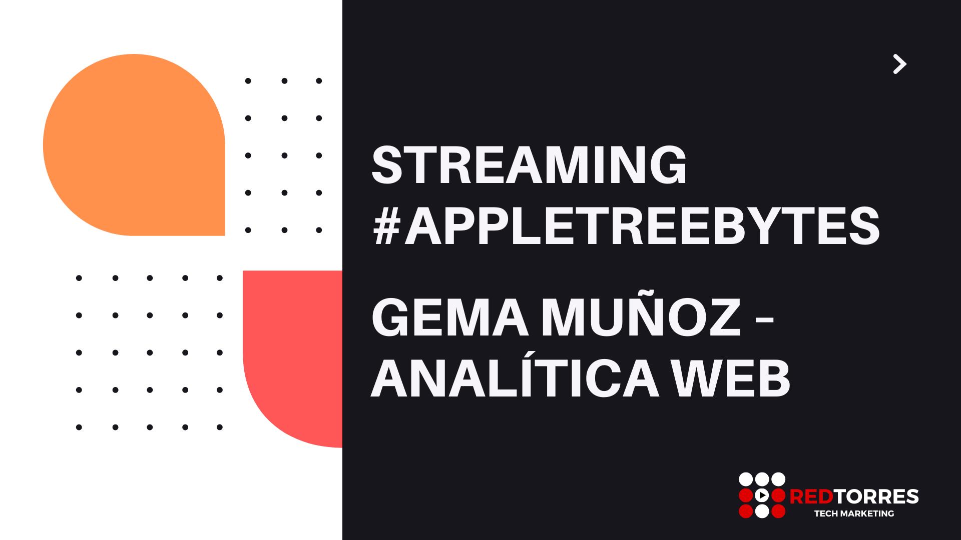 Gema Muñoz Streaming Sesión Analítica Web | REDTORRES