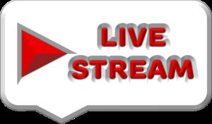 Que es el streaming o live stream
